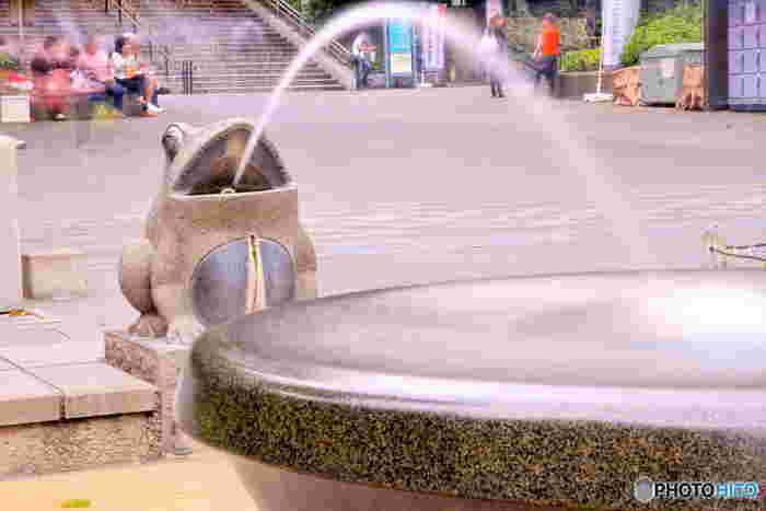 西郷隆盛像からまっすぐ歩いたところにあるのが「かえるの噴水」。おへそがついているのが可愛らしいですね。待ち合わせ場所にもおすすめ。