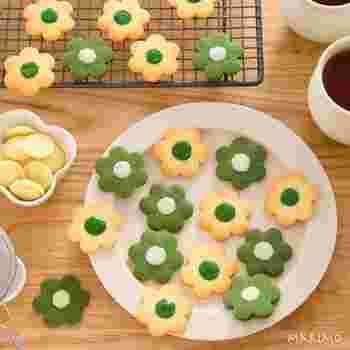 色合いの違うお花のクッキーがとってもかわいいですね♪抹茶とプレーンのクッキーの中央にチョコペンでデコレーションするだけなので、見た目ほど難しくはありません♪