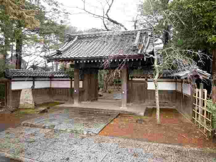 三光院は、京都にある曇華院の教えを受け継いでいる尼寺です。武蔵小金井にあり、常に木々や花々の手入れがされており、季節の移り変わりと共に様相が変わり、人々を癒しています。