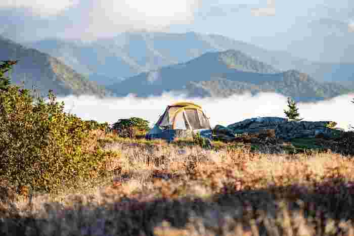 自然を満喫しながらそれぞれのスタイルで楽しむキャンプ。ホテルや温泉に泊まるのとは一味違った楽しみがありますね。季節が良くなると、どこへ行こうか計画を立てたくなる方も多いのではないでしょうか。