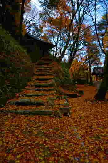 大威徳寺では、モミジが見頃を終えた後でも美しい景色を楽しむことができます。境内に散った色とりどりの落ち葉は、モミジの絨毯を敷き詰めているかのようです。