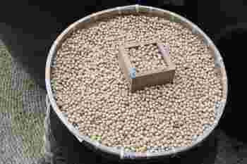 まずは、味噌の基本の種類から知っておきましょう。味噌は、米や大豆、麦などの素材からできています。日本全国でよく見られる種類は「米味噌」と呼ばれる種類。大豆に米麹を加えて作ります。  他には、中国や四国、九州などでよく見られる「麦味噌」や、愛知県などで親しまれる「豆味噌」があります。「麦味噌」は大豆に麦麹を加えて作られ、「豆味噌」は大豆のみを主原料に作られる味噌なんですよ。また、これらの3種類の味噌を混ぜ合わせて作ったものは「調合味噌」と呼ばれます。