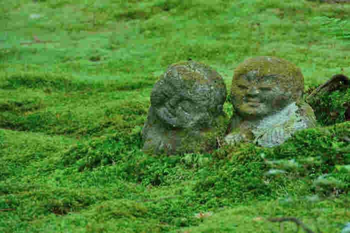 創建から1200年以上もの歴史を静かに刻む寺院境内は、苔に覆われており、まるで緑色のじゅうたんを敷き詰めているかのようです。苔のじゅうたんの上に寄り添う「わらべ地蔵」の可愛らしさは格別です。