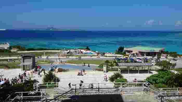 沖縄で人気の観光スポット「美ら海水族館」がある沖縄海洋博公園。