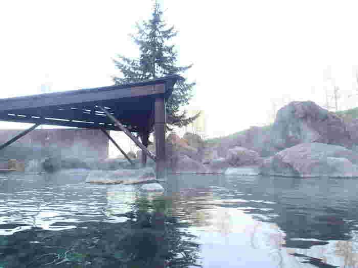 夏は木々の緑に、冬はパウダースノーの銀世界に包まれるニセコ。その大自然を満喫できる大露天岩風呂で、スポーツの後の疲れを流しましょう。夜12時まで入浴できるので、満天の星空を見上げながら温泉につかるのもいいですよね。日帰りでも利用できます。