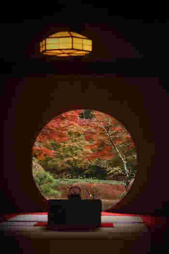 紫陽花と丸窓で有名な「明月院」。こちらの寺院も、いつの季節も本当に絵になる素敵な場所なんです。都会の喧騒から離れて、四季折々の移り変わりを体感するには絶好の場所です。