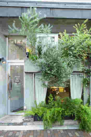 体に優しい野菜を中心にしたベジタリアン料理が人気の、「アインソフ ジャーニー」。新宿三丁目駅を出てすぐのところにあります。緑豊かな外観は、都会のオアシスを思わせます。