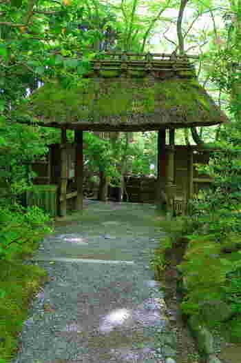 「祇王寺」は、竹林に囲まれひっそりと佇む尼寺で、大覚寺塔頭の寺院です。門を入ると、苔むした庭園と竹林が広がり、境内には、茅葺きの慎ましい本堂があります。