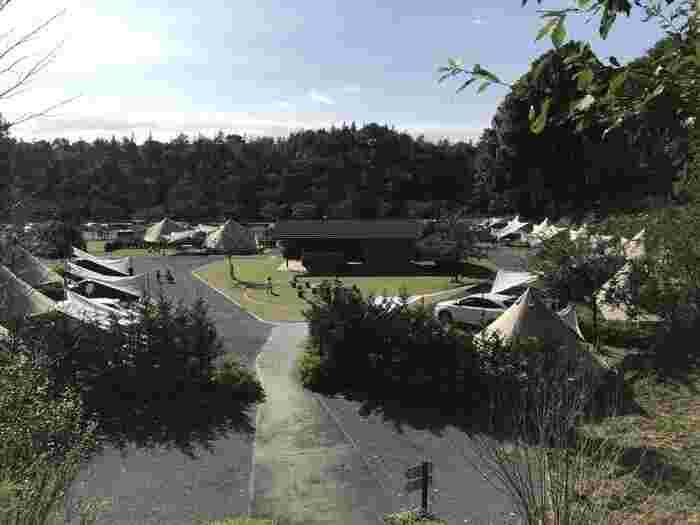 森の中で贅沢なグランピングが楽しめる、栃木県茂木にある「森と星空のキャンプヴィレッジ」。おしゃれなグランピングを満喫しながら、フィールドアスレチックやジップライン、森の迷路など様々な体験をすることができるんです。