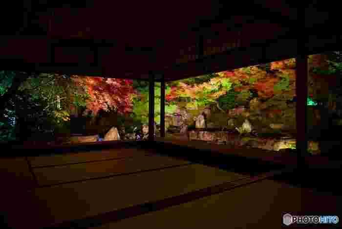 紅葉の時期の様子や、観光と共に楽しみたい周辺グルメも合わせてまとめましたので、ぜひ秋のおでかけの計画の参考にしてくださいね。