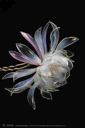 白く淡く、透き通る花びらは月の光そのもの。この花が夜闇に浮かび上がる姿を見られた方はとても幸運だと思わずにいられません。 Photo by Ryoukan Abe (www.ryoukan-abe.com)