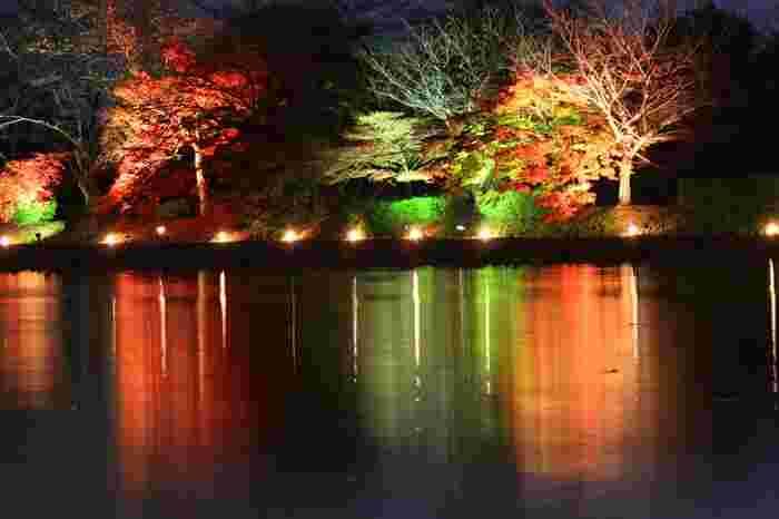 毎年11月中旬から12月の初旬、大覚寺では、ライトアップした夜間特別拝観「真紅の水鏡」が行われています。紅葉と光の競演を楽しむのなら、公式サイトで詳細を確認しましょう。