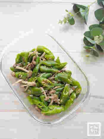 レンジでチンして和えるだけの簡単レシピ。万願寺唐辛子の鮮やかな緑色が綺麗なレシピです。
