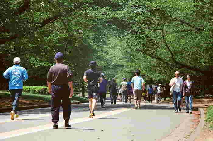 公園内にある約2キロのジョギングコースは、女性同士でも無理せず走れそう。トレーニングルームに更衣室やシャワー、ロッカーを完備しているので、汗をかいても安心です。