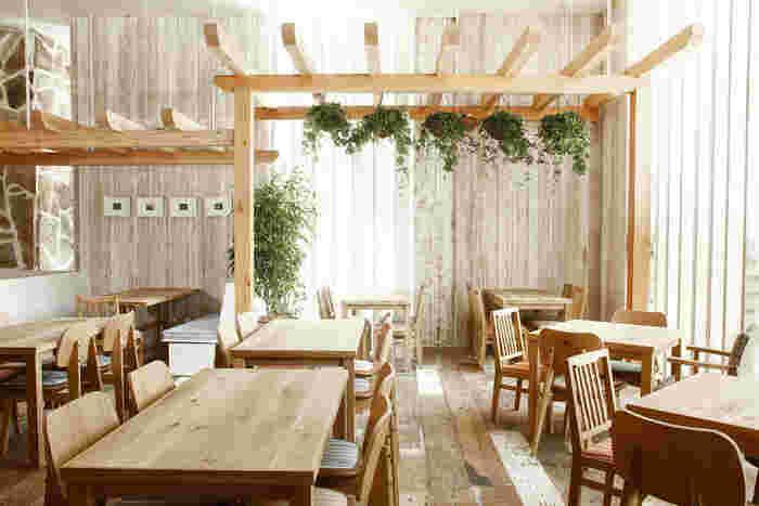 木の温もり溢れるウッディで開放的な店内。90席あまりの広々としたスペースはゆとりがあります。