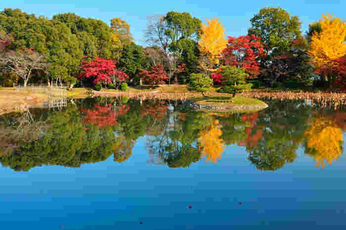 「大沢池」は、平安期に造られた人工林泉で、嵯峨天皇の離宮の庭苑池です。  なだらかな山の稜線と広い泉、豊かな緑。春には桜が、秋には紅葉が池を彩ります。嵯峨野らしい穏やかな景観を満喫できます。
