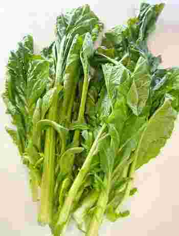 ザーサイは、中国・四川省の代表的な漬物。原料となるのは、やはり搾菜(ザーサイ/チャーツァイ)という名の野菜で、からし菜の変種だそう。写真は、葉っぱですが、根元の近くにこぶ状に肥大した箇所があり、その部分を塩漬けにします。
