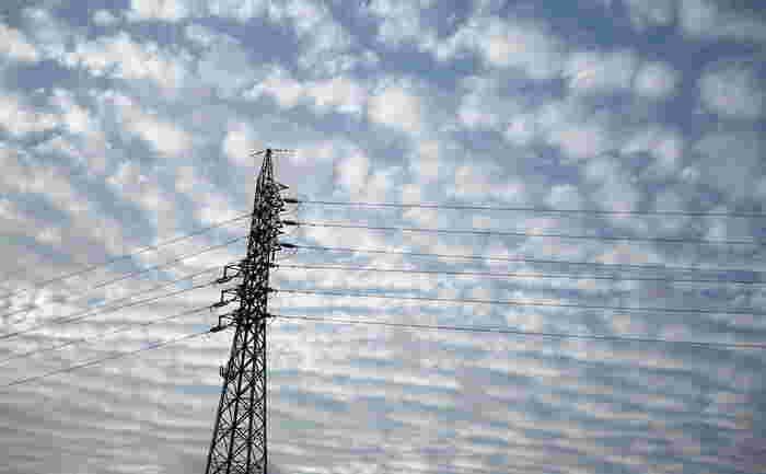 巻積雲(別名:いわし雲)・高積雲(別名:まだら雲)・風で千切られた積雲(別名:わた雲)などに見えることが多いので、たまに空を見上げて探してみましょう。