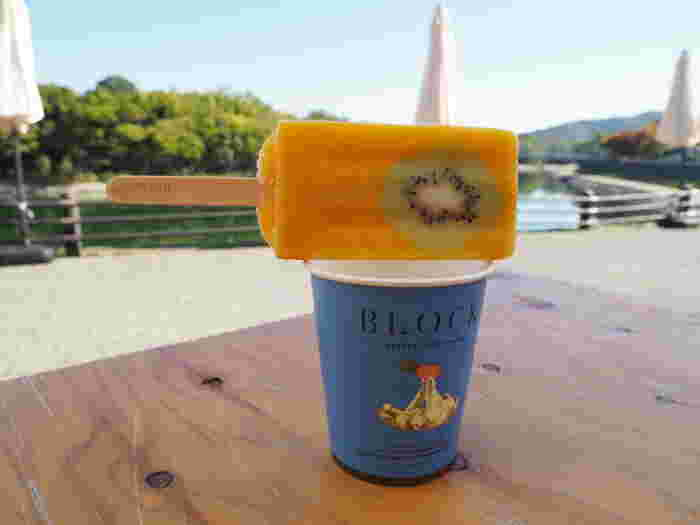 岡山の人気アイスキャンデー専門店「BLOCK natural ice cream」。フルーツを使ったアイスキャンデーが人気!寒天や希少糖などを使用し、素材にこだわって作られています。動物柄のおしゃれな紙コップがセットになっているのも特徴。