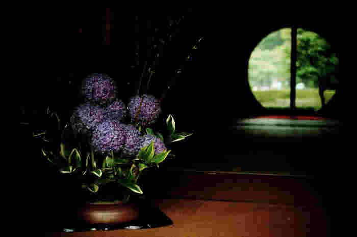 明月院のもう一つの見所が「丸窓」です。窓の向こう側に見える景色は四季折々の表情を見せてくれ、日本に生まれてよかったと思わせてくれる瞬間を味わうことができます。そして窓の手前には、そのシーズンの花々が粋に格好良く活けられています。日本の美を堪能できる素敵な場所です。