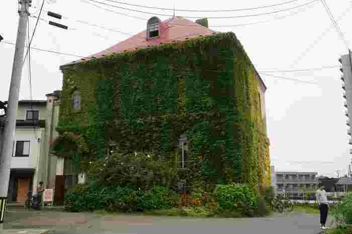 盛岡市内で最も古い洋風建築物が、こちらの「旧石井県令邸(キュウイシイケンレイテイ)」。蔦が覆っていますが、明治18~19年に建設された、本格的なレンガ造りの洋館です。入館することもできますよ。