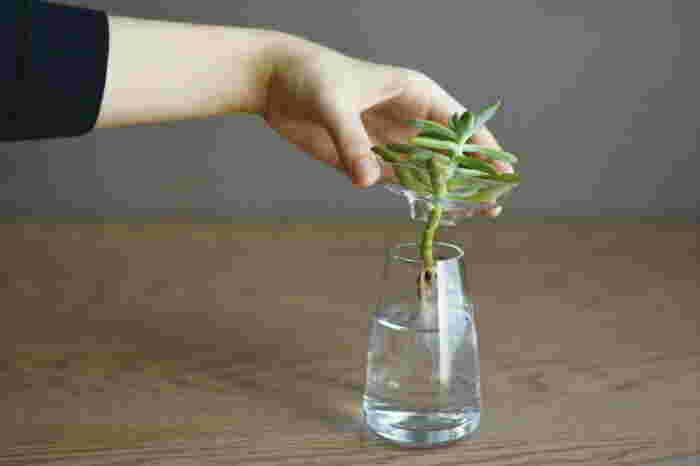上部尾の皿と水を入れる部分の二つのパーツで構成されているため、水の交換も簡単にできます。