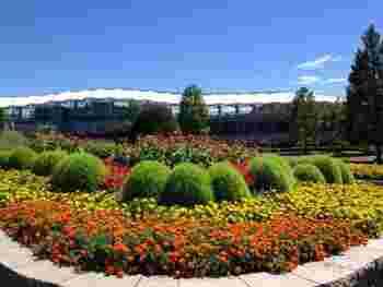 地下鉄南北線、泉中央駅から徒歩5分の「七北田公園」は、広い敷地に芝生広場やアスレチック、大型遊具などが揃っている大きな公園。土日ともなれば子どもたちが遊びまわっている七北田公園ですが、大人がワクワクするスポットがあるんです。