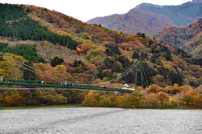11月上旬から中旬に見頃を迎える全長320mの大吊り橋。鮮やかに色づいた木々が湖面をも美しく彩る紅葉のシーズンには多くの人が訪れる人気スポットです。