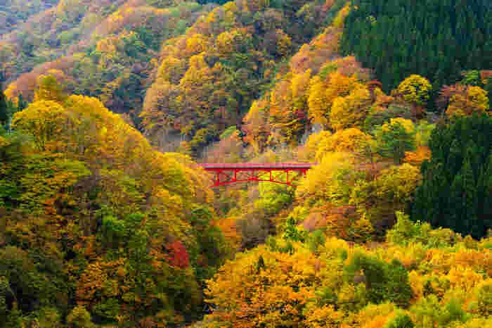 高山村の松川沿いに広がる8つの温泉。これらはまとめて「信州高山温泉郷」と呼ばれています。それぞれの温泉で特色が異なり、趣のある落ち着いた温泉宿から、レジャー施設を併せ持つ温泉施設まで、旅行の目的に合わせて選ぶことができます。