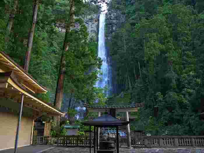 場所はかわって、和歌山県の世界遺産・熊野古道へ。垂直の断崖に沿って、落差133mを豪快に落下するのは「那智の滝」です。 滝つぼ付近にある、こちらの熊野那智大社の別宮・飛瀧神社から見上げると、その迫力や轟音、神々しさに圧倒されるはず。  それもそのはず、熊野那智大社は「那智の滝」の自然崇拝によりおこったお社であり、飛瀧神社は「那智の滝」をご神体として祀っています。  神の恵みを求めて、古代より多くの人々が訪れている場所であり、滝付近には貴重な照葉樹林「那智原始林」も。唯一無二の、まさに後世に遺したい場所です。