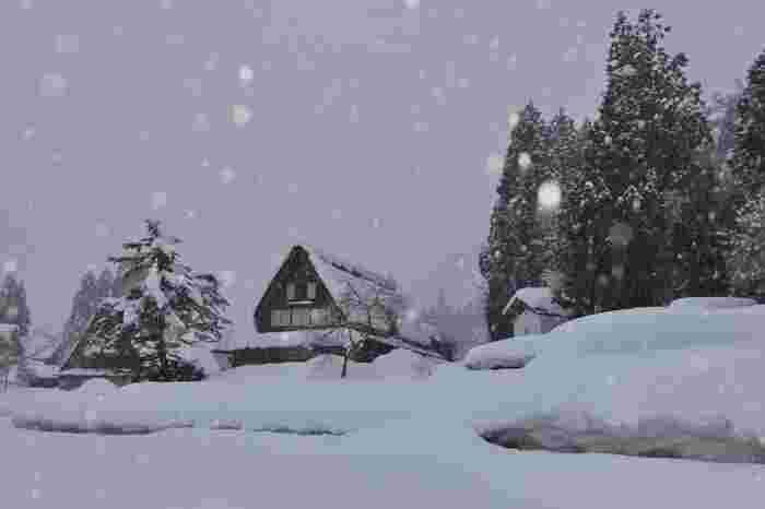 しんしんと雪が降り積もる《相倉集落》の冬。