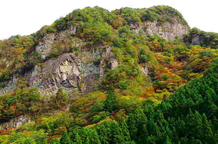 垂直にそびえたつ高さ約200メートルの断崖が連なる小太郎岩は、日本百景の一つに数えられる景勝地です。雄々しい岩肌の中腹には、「ライオン岩」と呼ばれるライオンの彫像のような岩壁があります。