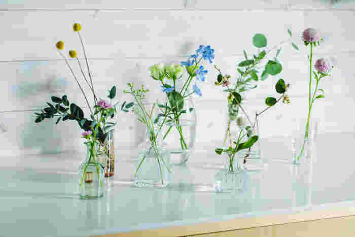 【連載】GreenSnap×キナリノ「グリーンや花をもっと身近に 」Vol.2 ハーバリウムを作る