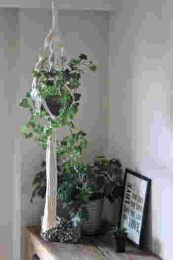 鉢の下の部分にたっぷりとタッセルをとることで、存在感がぐっと増しています。  長く伸びるツタ植物を吊るしてあげると、バランスよく見えますね。
