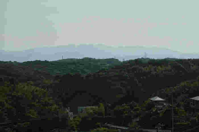 開発が進んだとはいえ、まだまだ自然が残る多摩ニュータウン。住宅地にも緑道や池を作り、昔ながらの里山の風景を残すように整備されています。作品に登場したタヌキたちも、この森の中で遊んでいるかも知れませんよ?