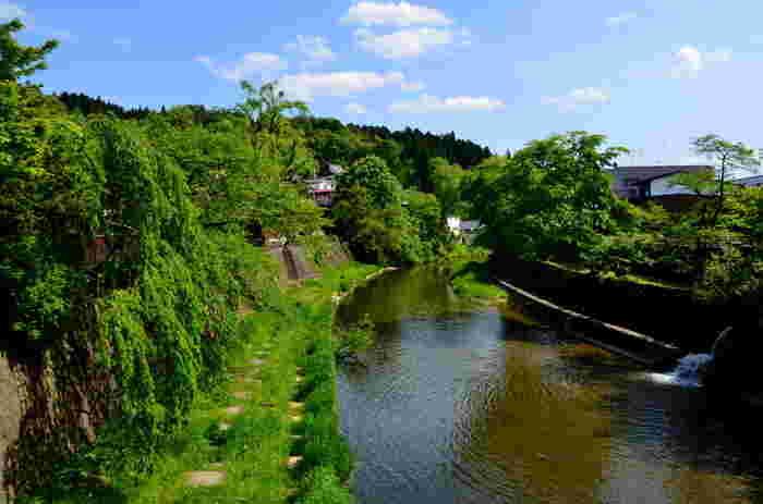 中橋から眺める宮川の風景も絵になります。悠然と流れる宮川、緑に覆われた土手、川沿いに植樹された柳の木が融和し、風光明媚な景色が広がっています。