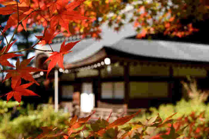 もともとは武士の出であったにもかかわらず、出家し、歌人として名高い西行法師終焉の地として知られている弘川寺は、役行者によって7世紀中頃に開基された真言宗の寺院です。