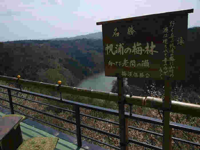 古くから梅の名所として知られる月ヶ瀬梅林は、五月川渓谷沿いに約13000本の梅林が広がる国の名勝です。
