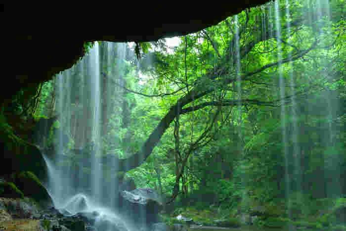 まだまだ暑さが続く日々。お休みの日には、心が洗われるような美しい滝のある風景に出会いに行きませんか?