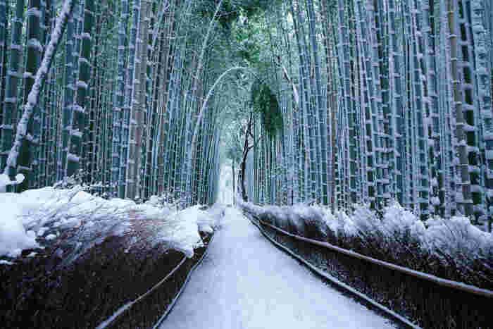 冬の京都を訪れる際には、防寒対策が必須。天気が変わりやすいので、コートやダウンは撥水加工したものがおすすめです。そして、最も気を付けたいのが靴。特に、神社仏閣の石段などはとても滑りやすいので、万が一の雪に備え、防水はもちろん滑りにくい靴を履くのがベターです。ホッカイロも用意しておくと心強いですね。