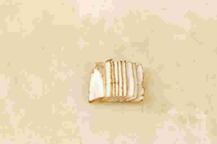 ごぼうや大根など円柱状の野菜の千切りは、まず薄い短冊切りにしてから(画像の状態)。短冊の大きさをそろえるときれいな千切りになりますよ。