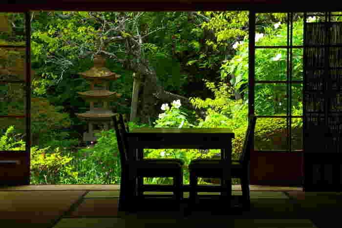境内の「書院」は非公開ですが、正面玄関から眺められる座敷と庭の景色は風情があっておすすめです。