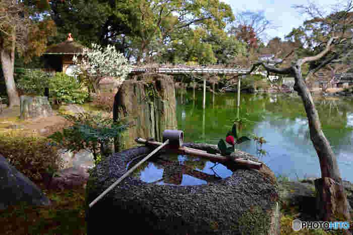 広大な敷地を誇る京都御苑には、数々の美しい日本庭園があります。緑豊かな京都御苑で、のんびりと浮世絵のような景色を堪能してみるのもおすすめです。
