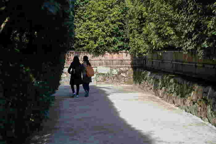 銀閣寺の山門を通り抜けると、中門まで続く約5メートルの参道があります。竹垣で囲まれた細いこの参道は、銀閣寺垣と呼ばれており、外の喧騒と銀閣寺境内の浄土世界をつなぐ道でもあります。