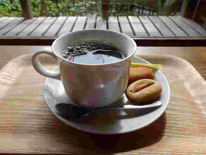 次のスポットへ行く前に立ち寄りたいのが、北鎌倉駅前にある「香下庵茶屋」。茶室を改装した店内は、他の古民家カフェとはひと味違う風情を感じることができます。コーヒーをオーダーすると、かわいいコーヒーボール(焼き菓子)がついてきます。