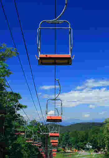 「たんばらラベンダーパーク」は、スキー場で夏ならではの過ごし方ができると人気のスポット。夏山リフトに10分揺られると、標高1300mの涼しさに包まれます。