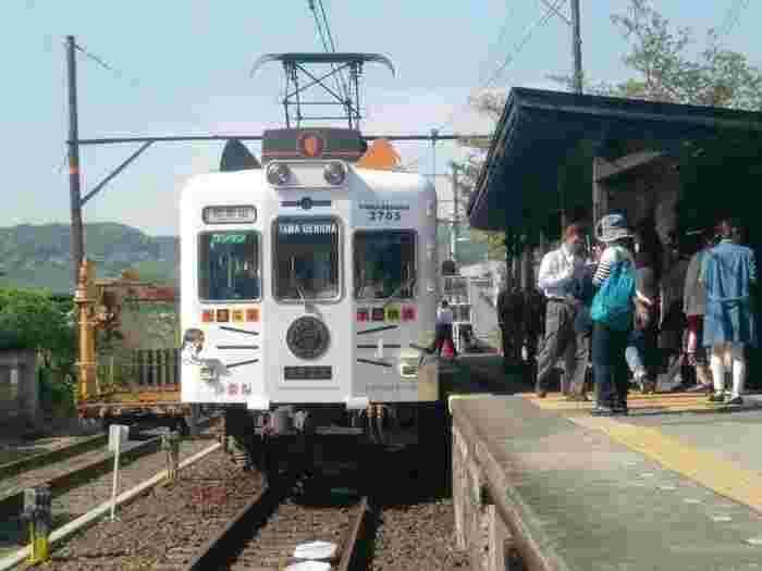 タイミングが合えば、たま駅長をモチーフにした「たま電車」に乗ることもできます。車内は猫型の椅子など猫モチーフがたくさん。猫好きにはたまらない電車です。