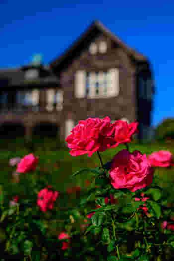 庭園には約100種200株ものバラが華やかに咲き誇ります。重厚な洋館とのコントラストは、ここが日本であることを忘れてしまいそうな美しさです。