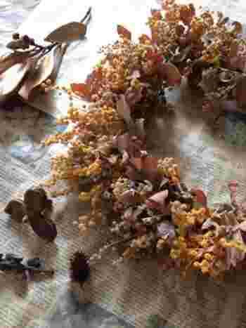 春が旬のミモザ。ドライフラワーのリースにして秋まで飾っておくと、こんな風に落ち着いた色合いのイエローになります。