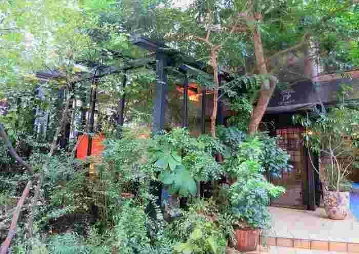 """乃木坂駅から歩いて数分。ビル街の一角に、木立に囲まれてたたずむお店です。店名のCafè de La Paixとは""""平和珈琲""""の意。"""